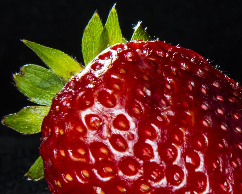 Theme-macro-Berry-CarolSmith