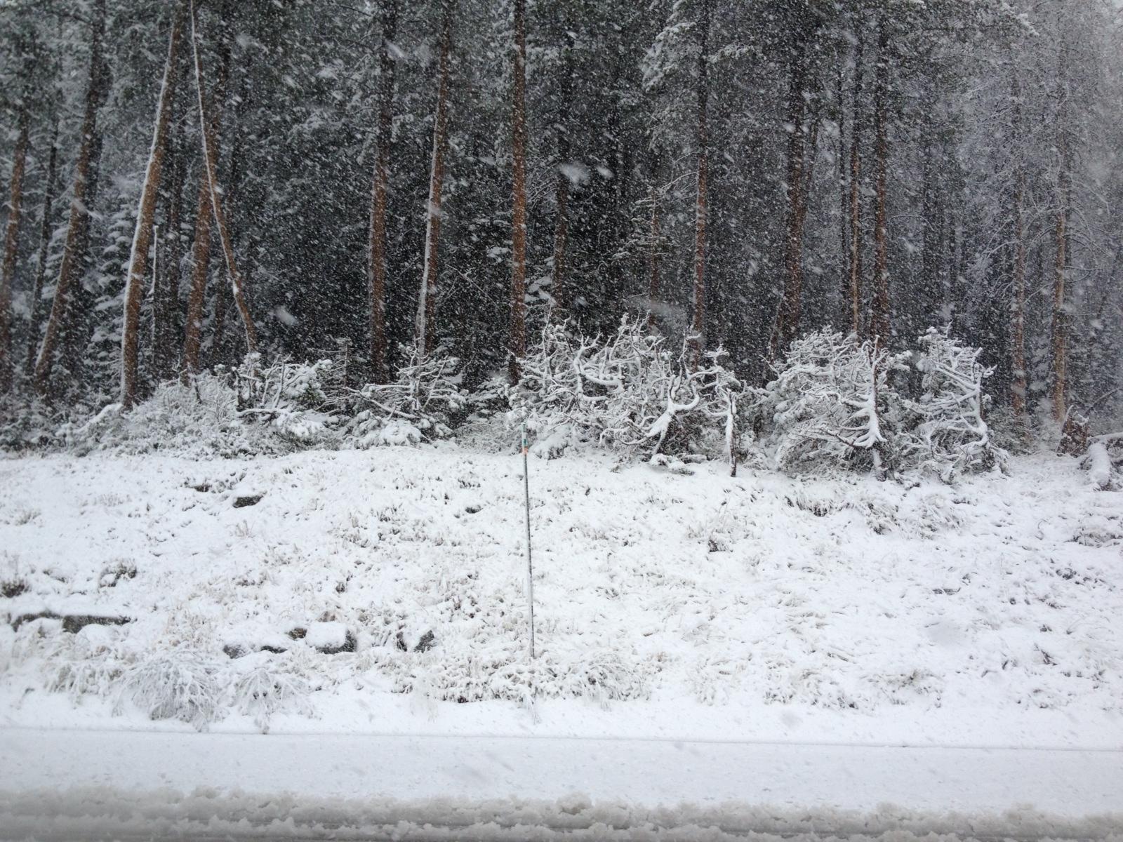 Su snow