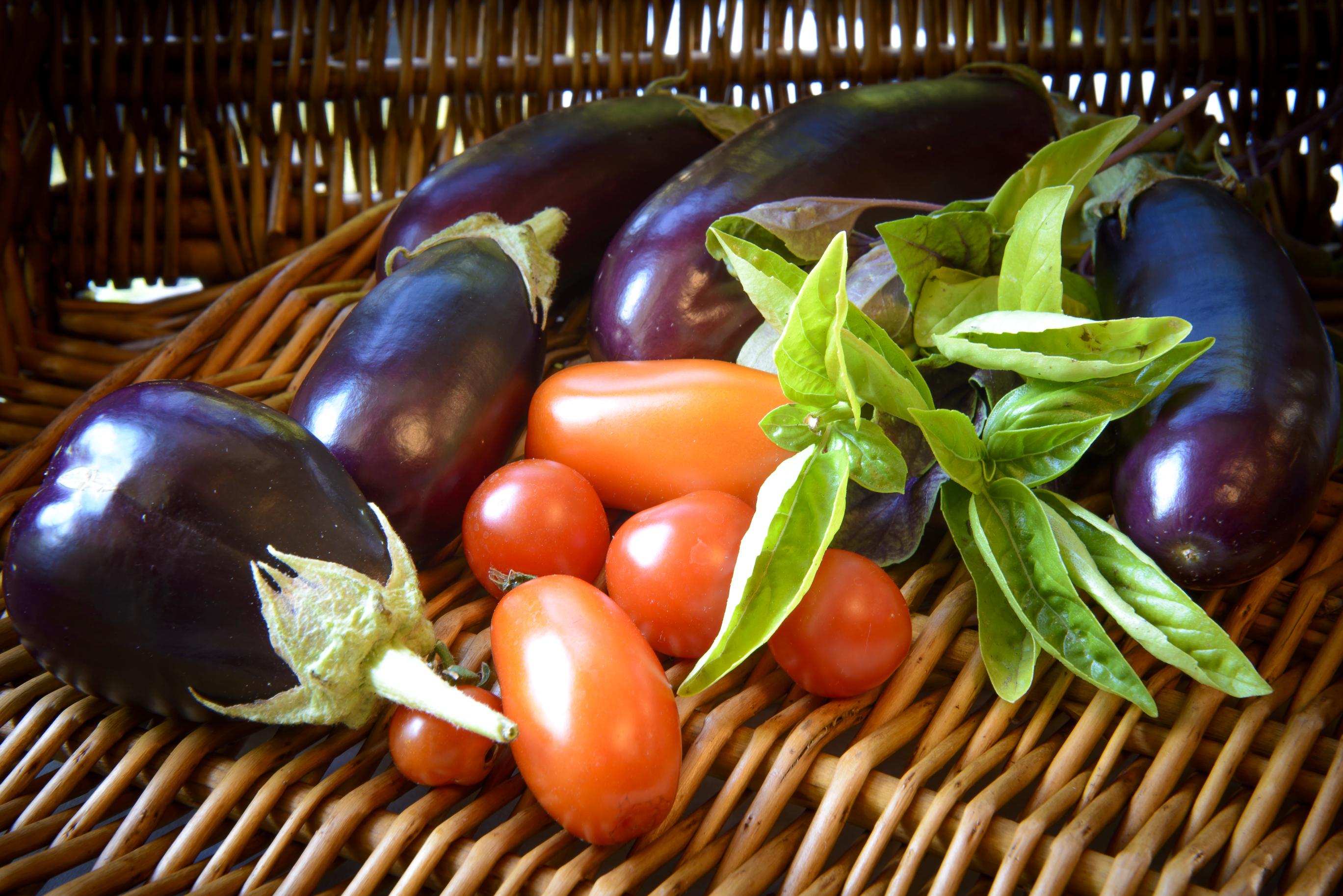 Eggplant-0868