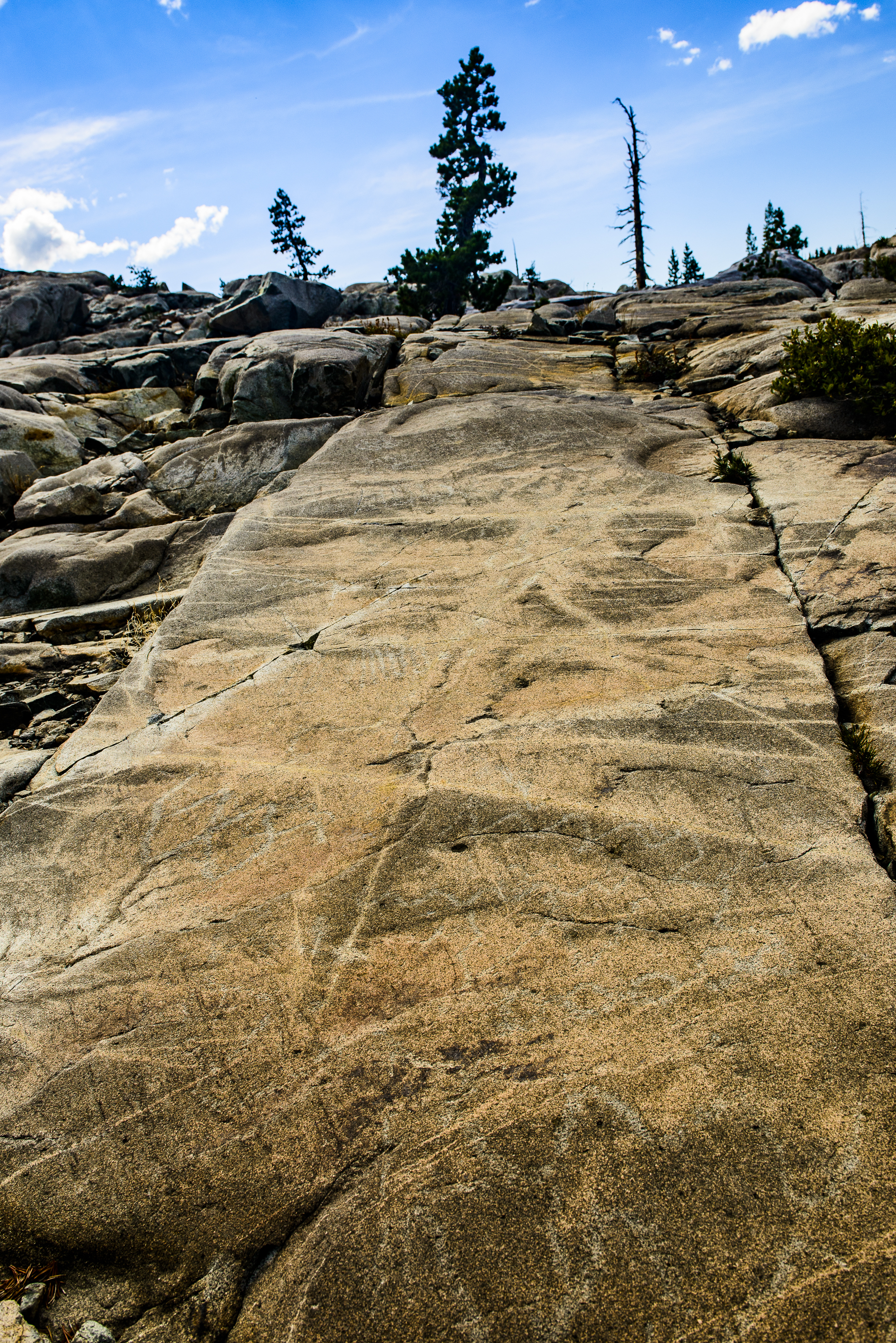 Meadow Lake Petroglyphs-7449