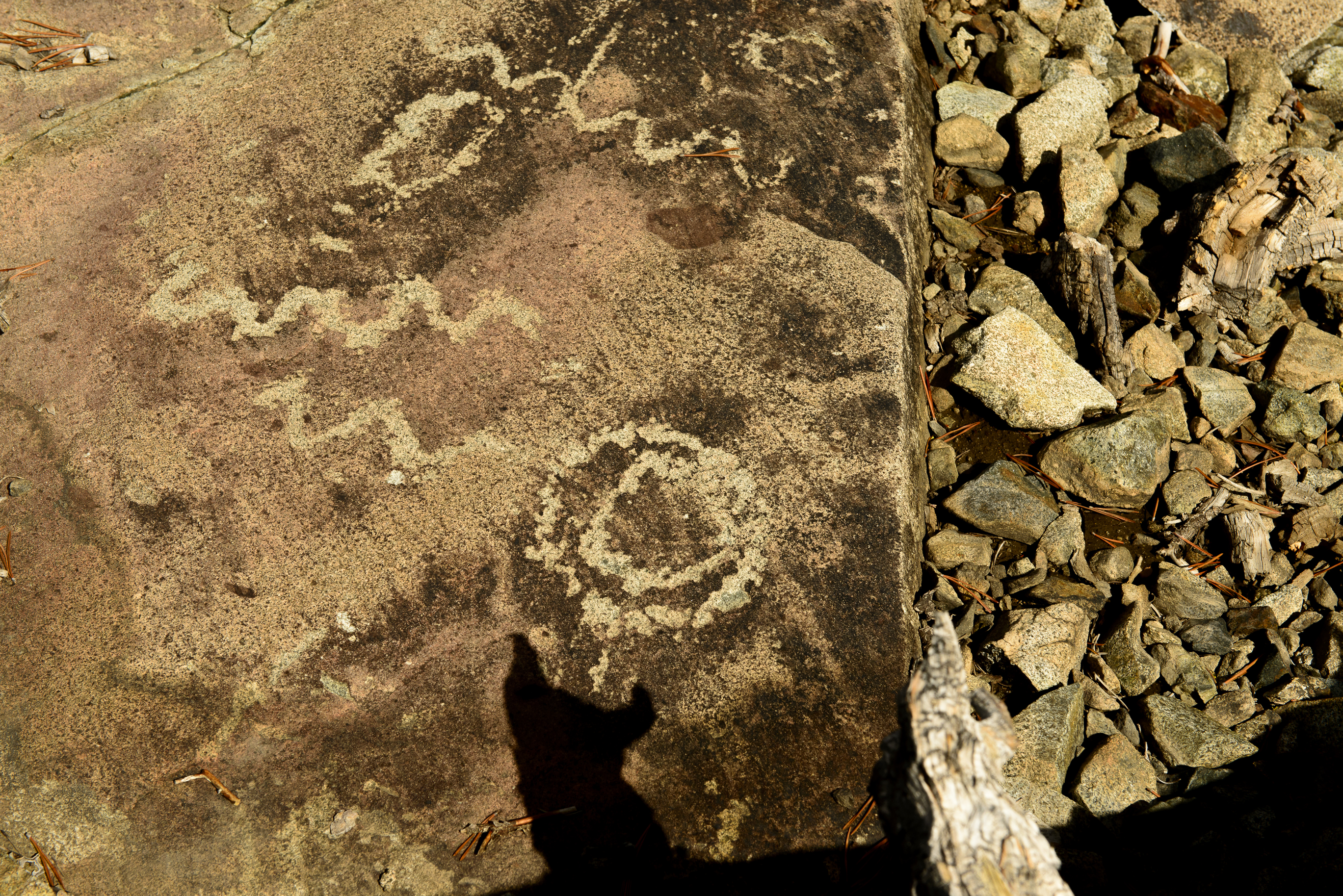 Meadow Lake Petroglyphs-7473
