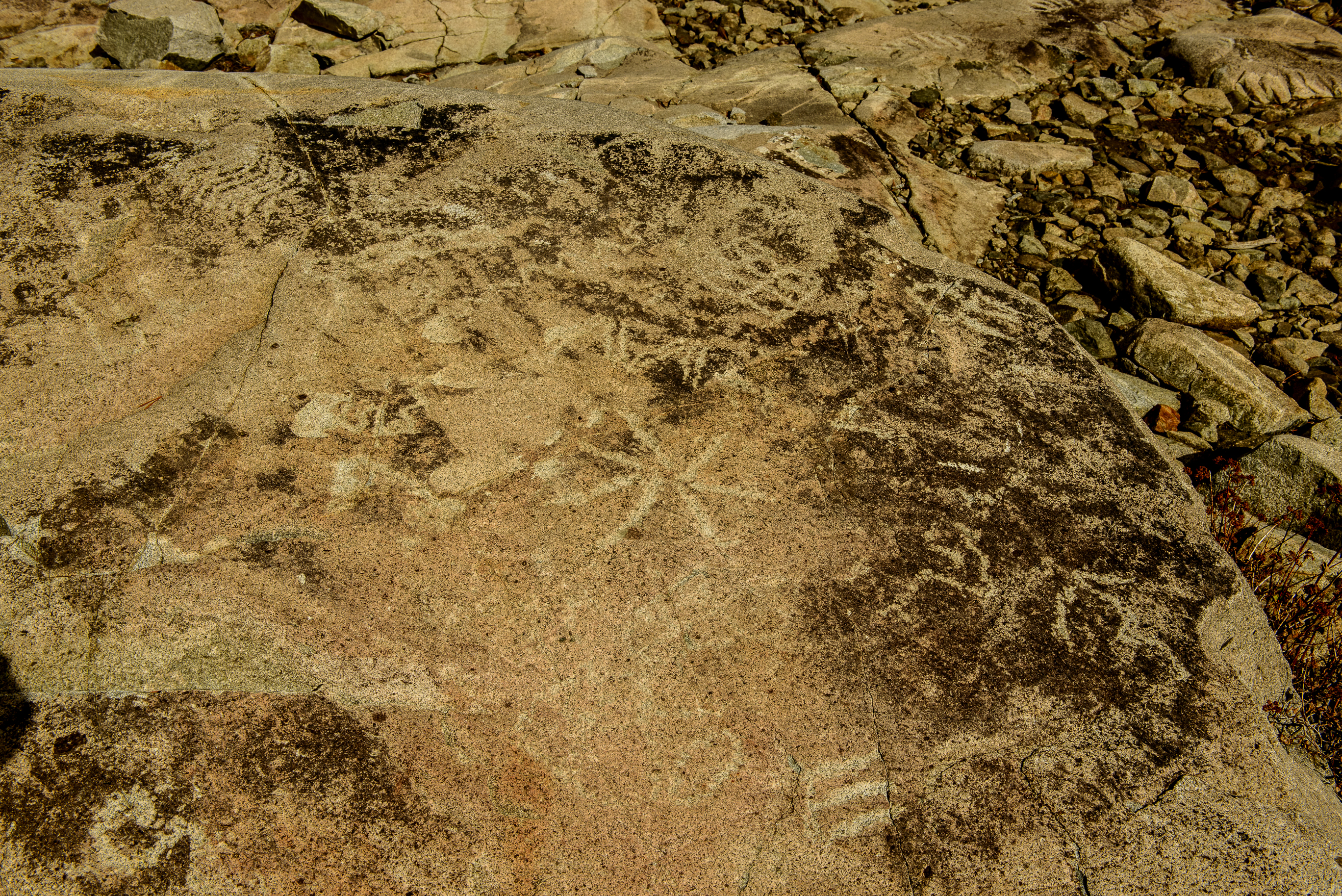 Meadow Lake Petroglyphs-7516
