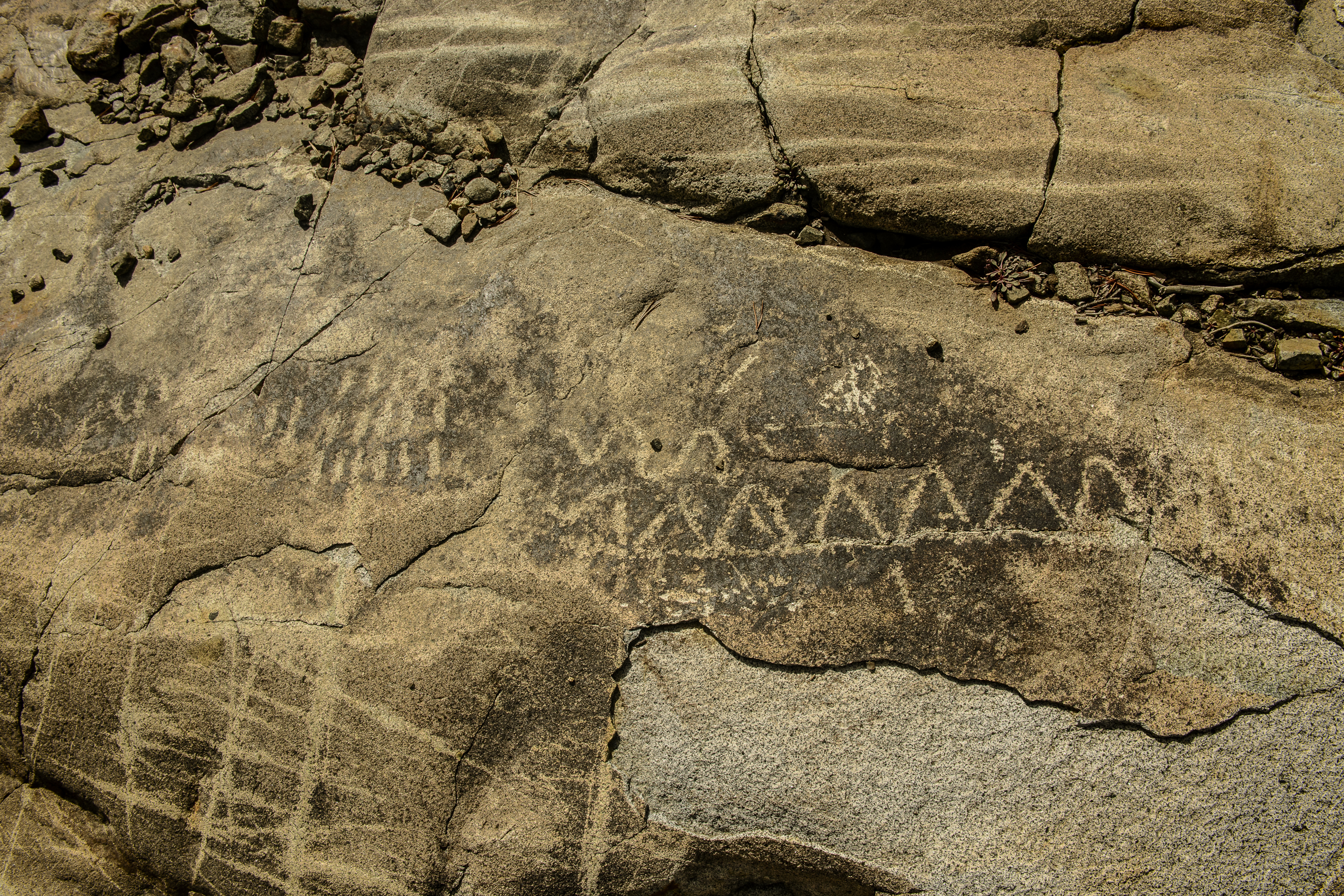 Meadow Lake Petroglyphs-7524