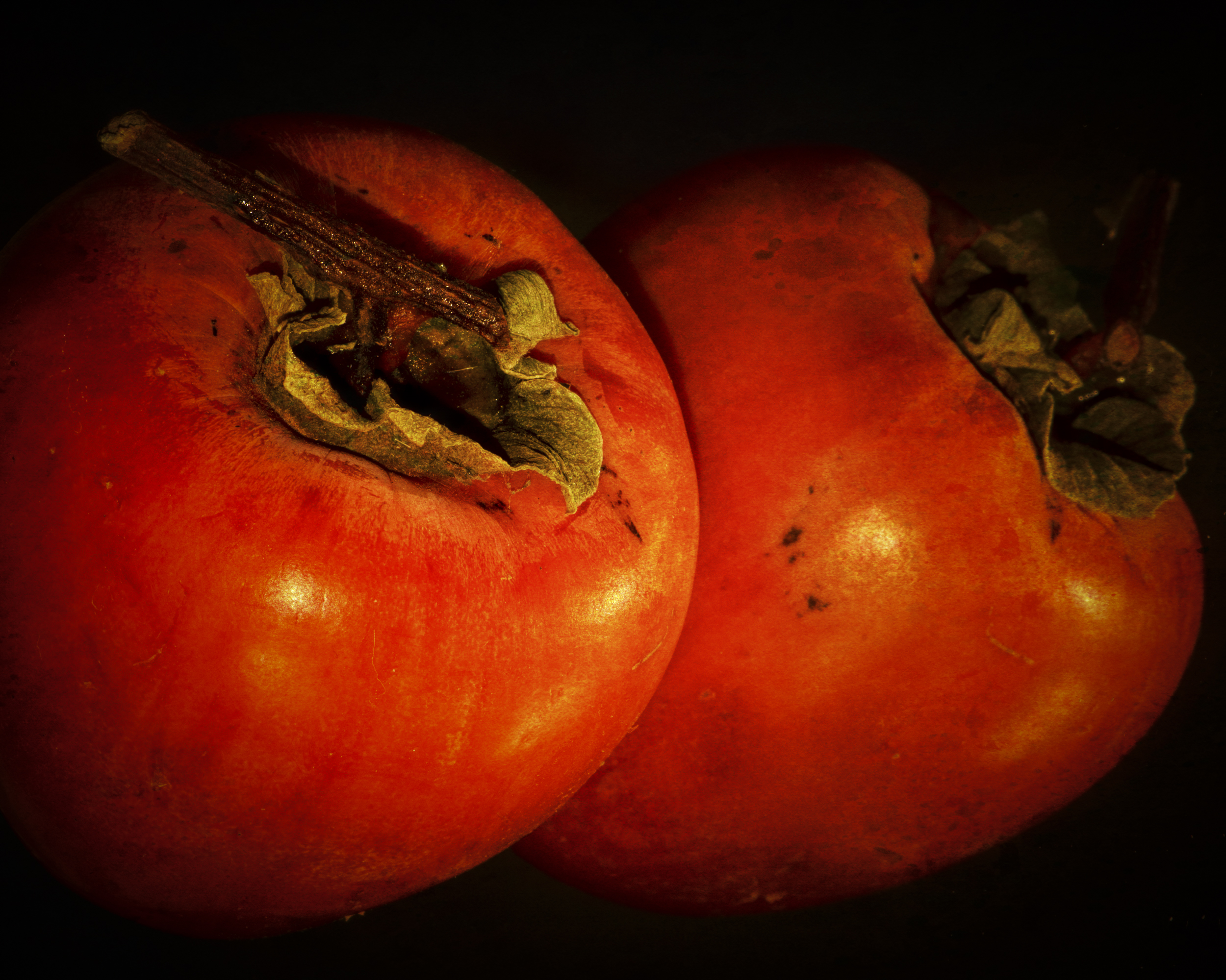 persimmon-8352-Edit