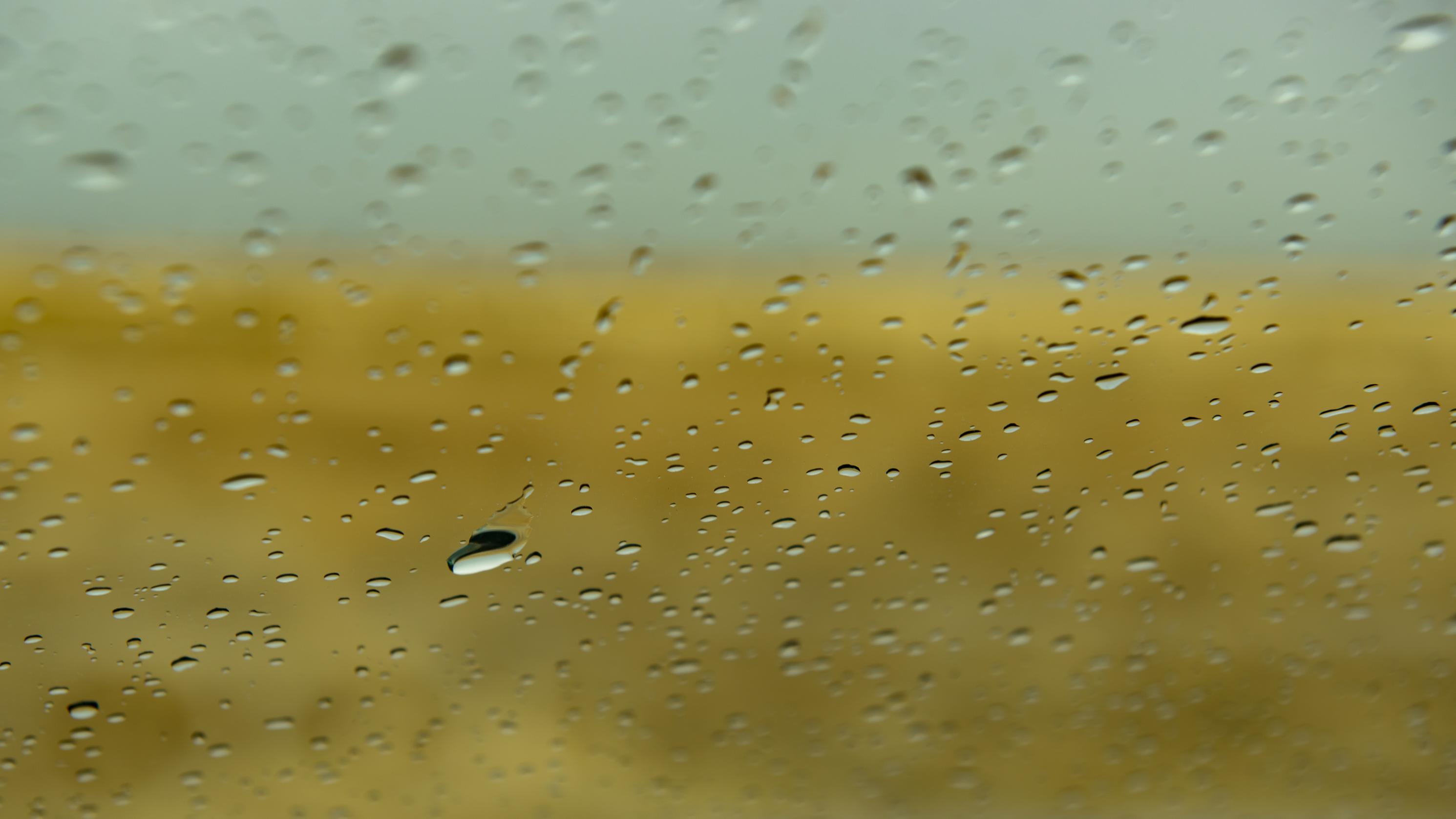 Raindrops-9118