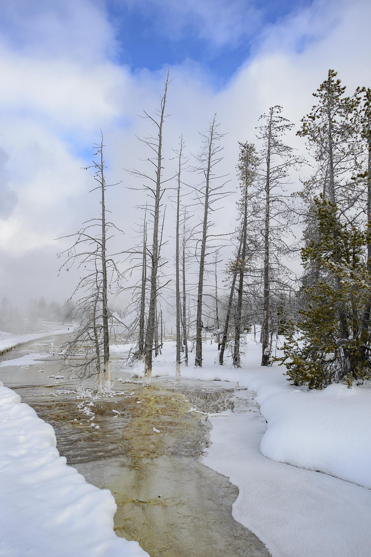 Yellowstone Day 1-4104
