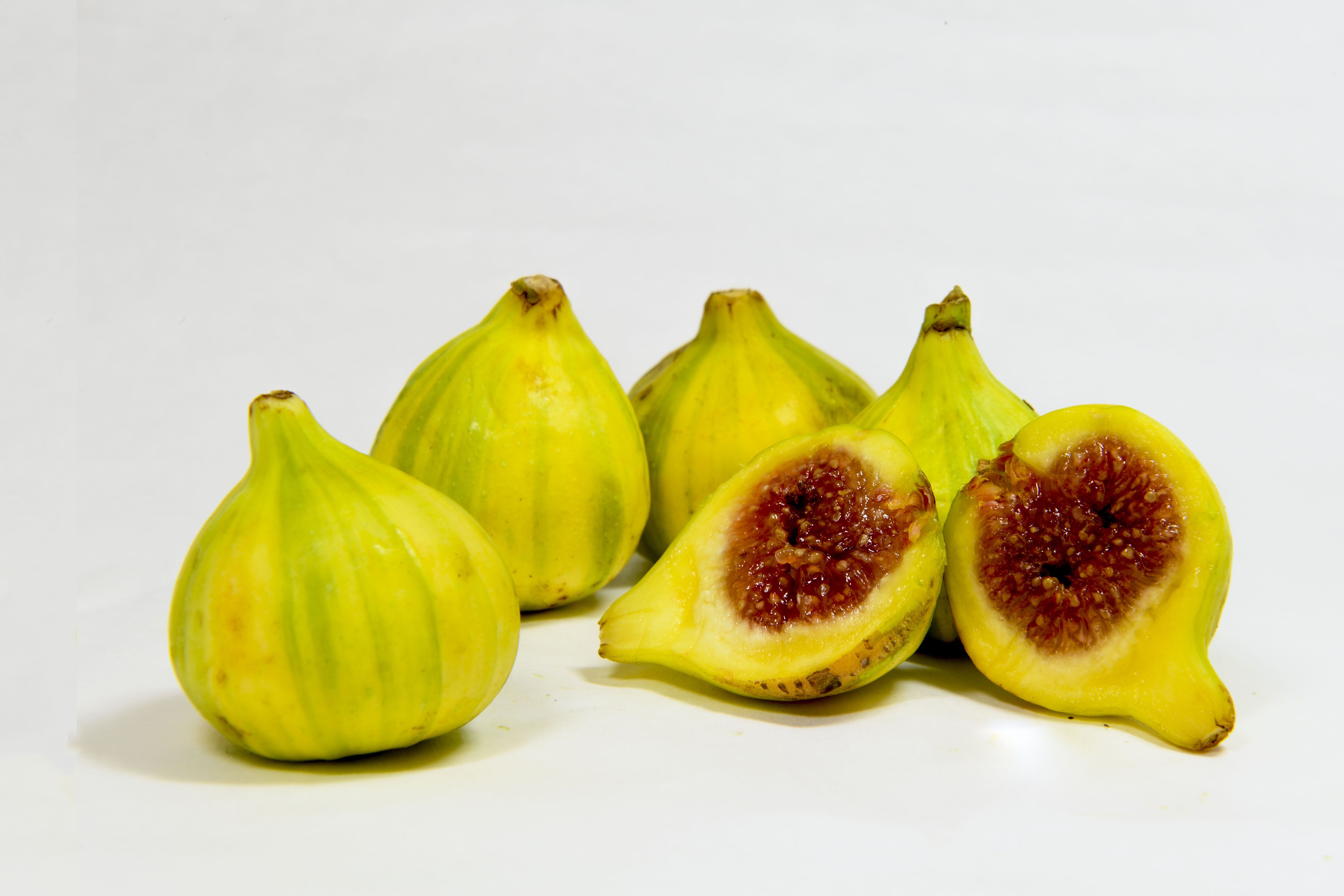 tiger figs.jpg