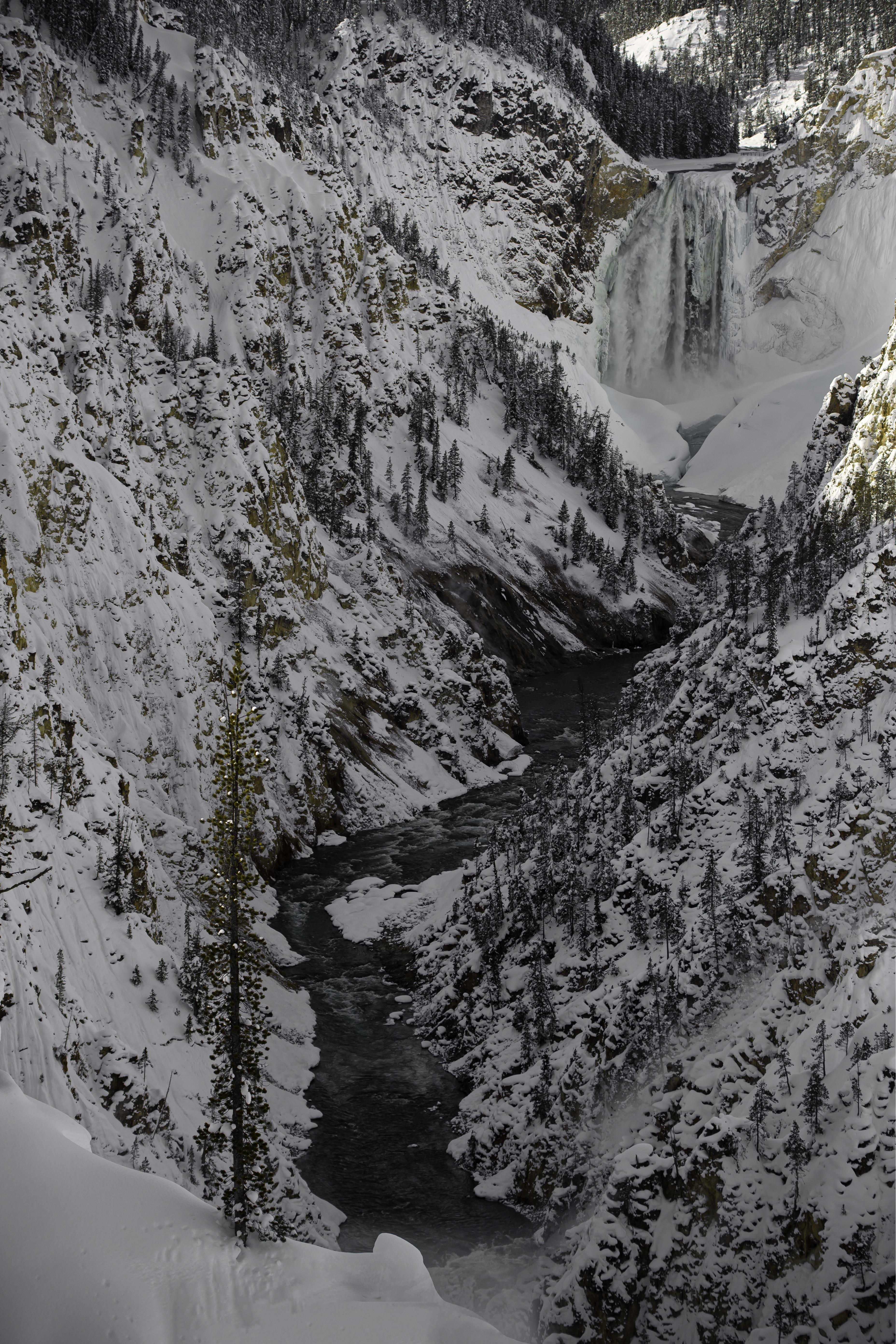 Yellowstone Day 3 190330-1