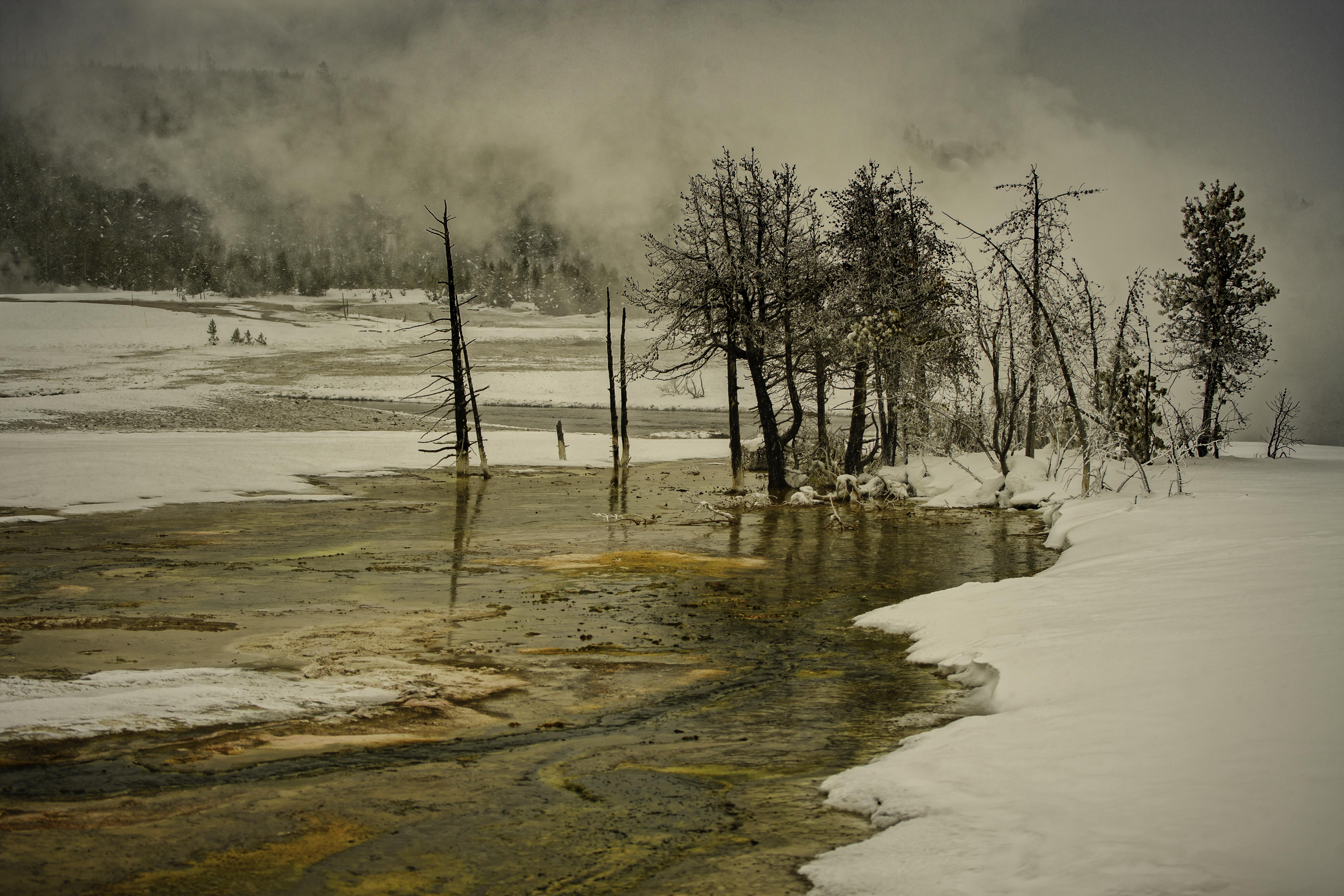 Yellowstone Day 4    194451-1.jpg