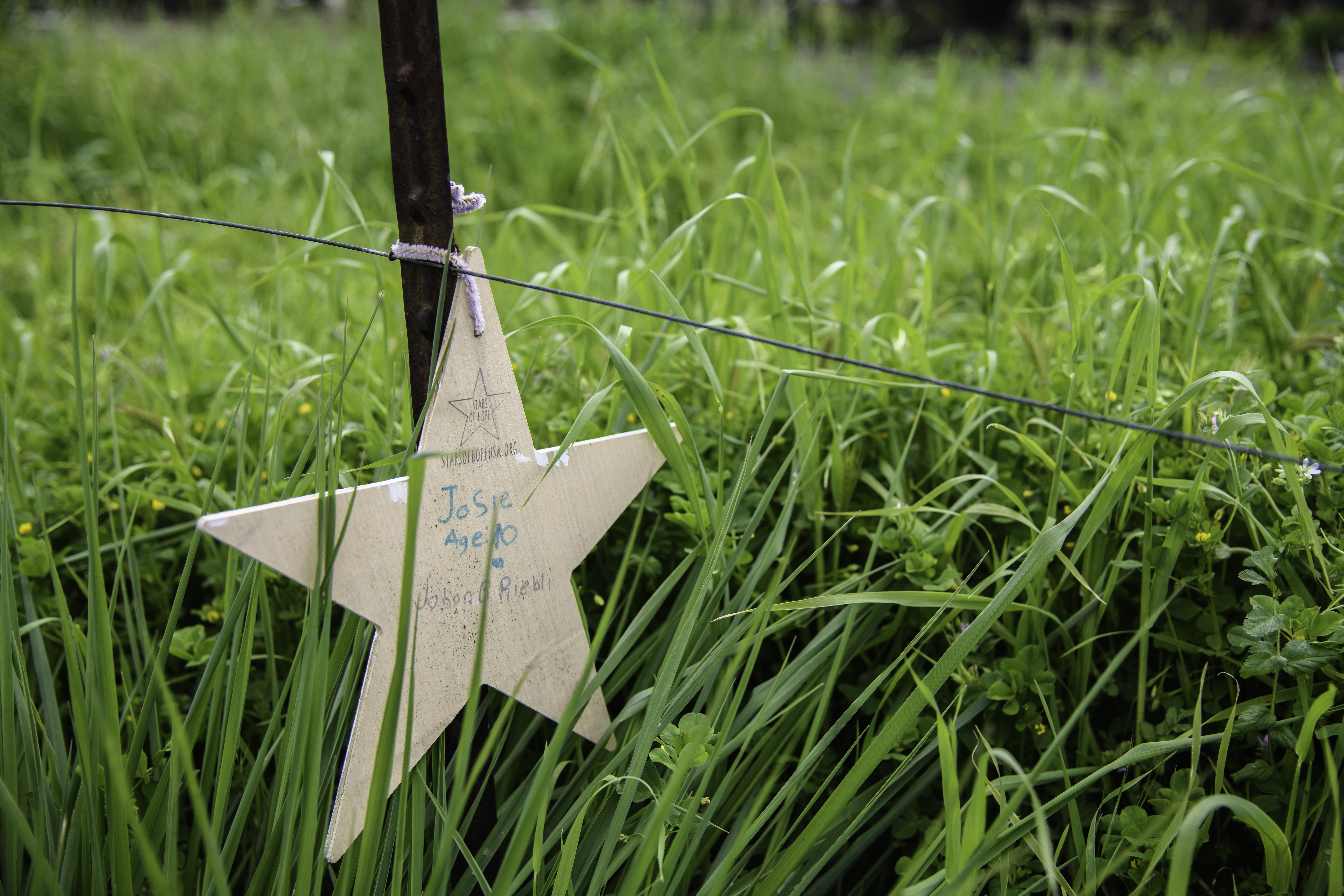 Stars of hope 1
